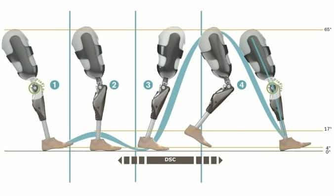 Ottobock Optimised Physiological Gait